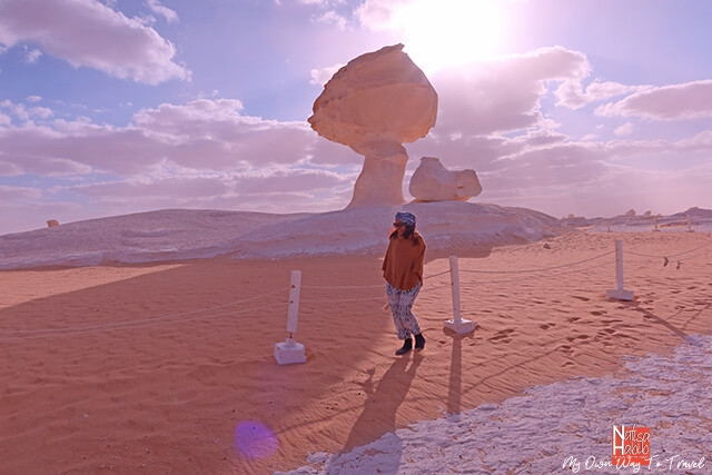 Chicken and mushroom rock formation in the White Desert