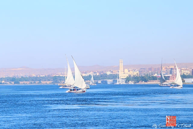 Feluccas on the Nile River