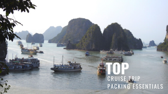 Top Cruise Packing List Items